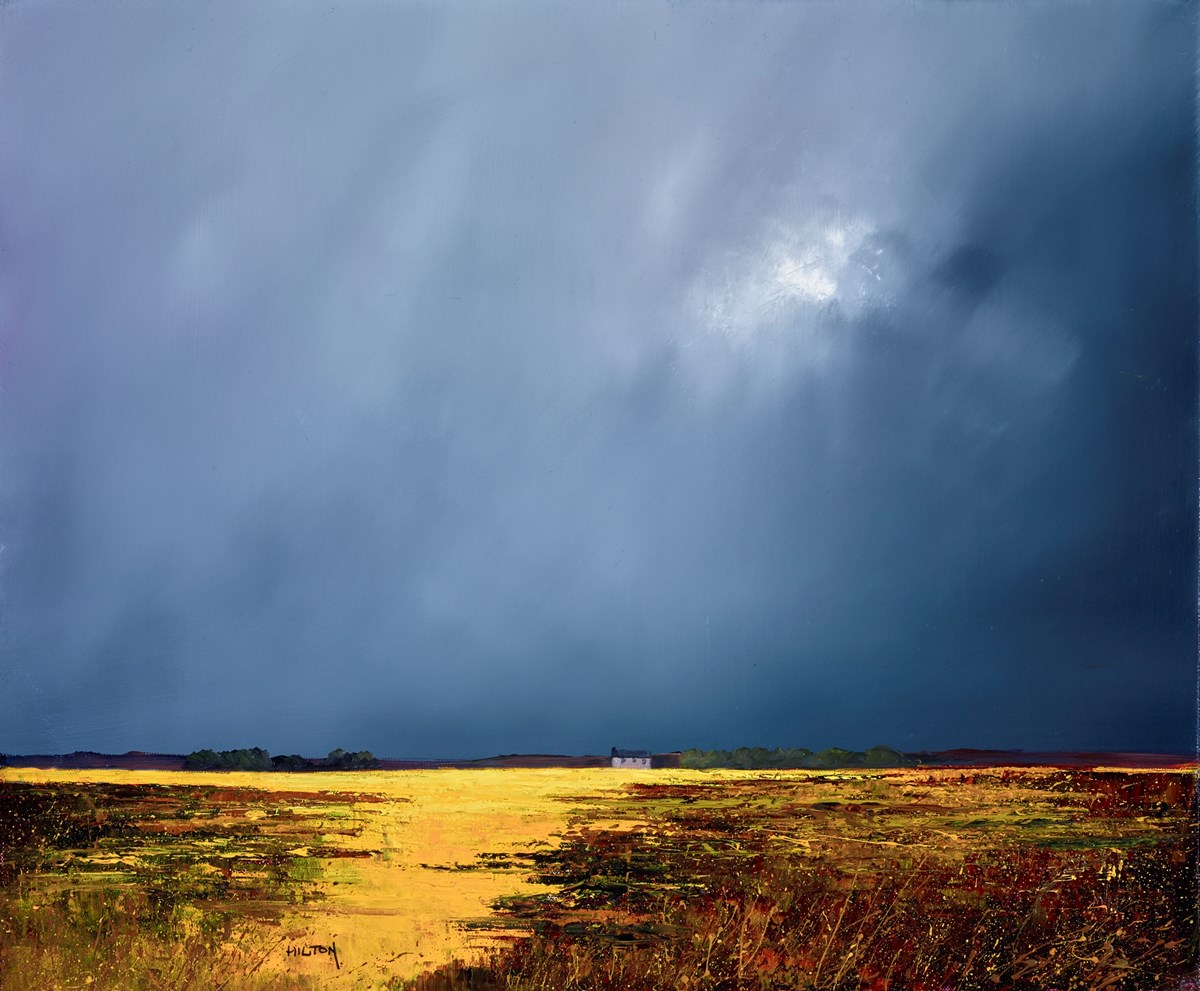 Nighttime Meadows by barry hilton -  sized 24x20 inches. Available from Whitewall Galleries